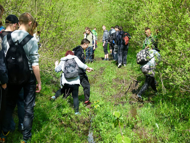 Zajęcia terenowe Źródliska Wisłoki - P1120651.JPG