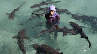 KKP Dorong Pengembangan Desa Wisata Bahari di 15 Kawasan