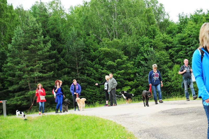20130623 Erlebnisgruppe in Steinberger See (von Uwe Look) - DSC_3656.JPG