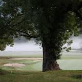 Régional Golf Ligue Centre Est
