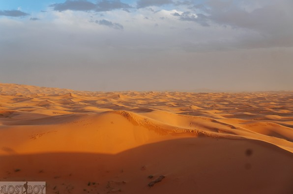 sahara desert-25