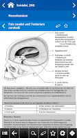 Screenshot of Anatomie pocket