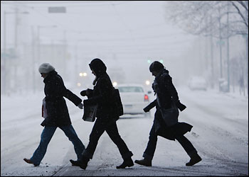 Damage Assessment_Snowstorm 0301 09