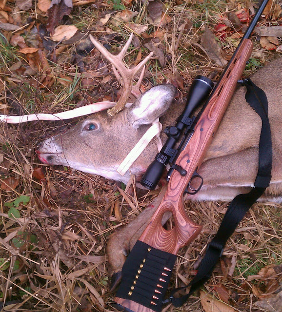 Thumper's first buck, and first deer with the new clothing