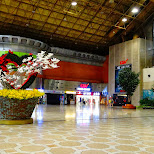 at Gimpo airport ready to fly to Tokyo in Seoul, Seoul Special City, South Korea
