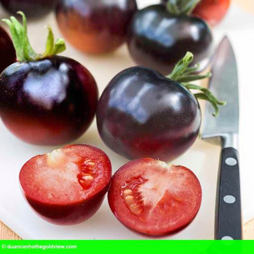 Hình 1: Cà chua đen đại gia 140 nghìn/kg: Dân Việt xếp hàng không mua nổi