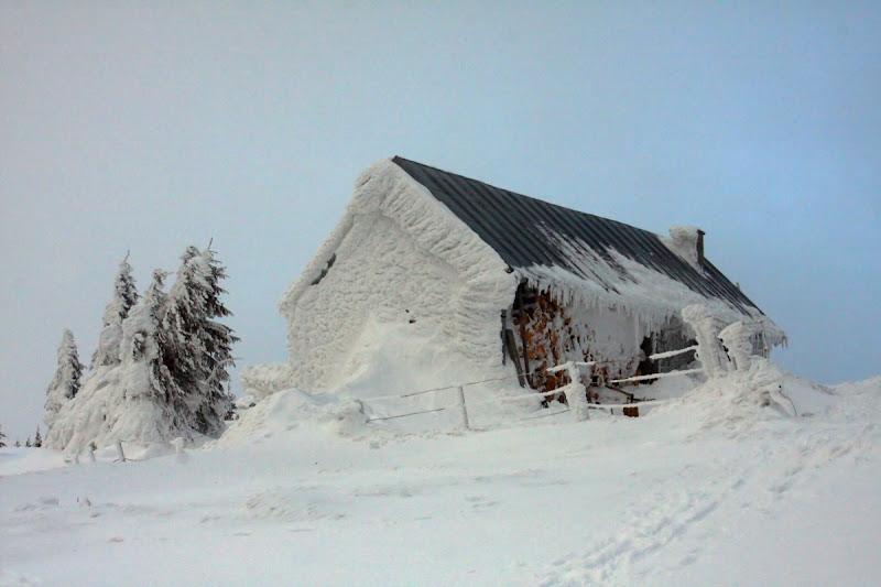 Munții Vrancei Covasna munte zăpadă schi drumeție