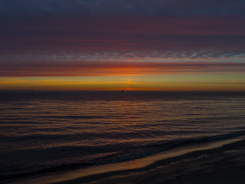 Last sunrise 2014 (10).png