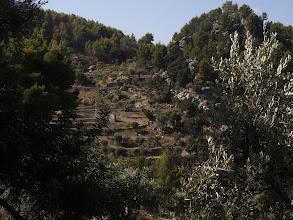 Photo: View across Deia