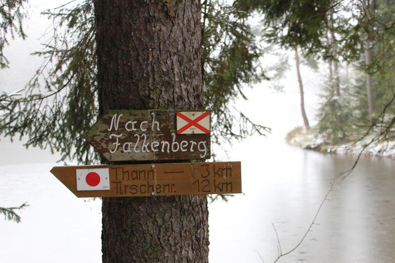 01. Januar 2016: Neujahrswanderung ins Waldnaabtal - IMG_1561.JPG