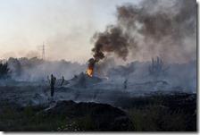 Italia maglia nera in UE per inquinamento