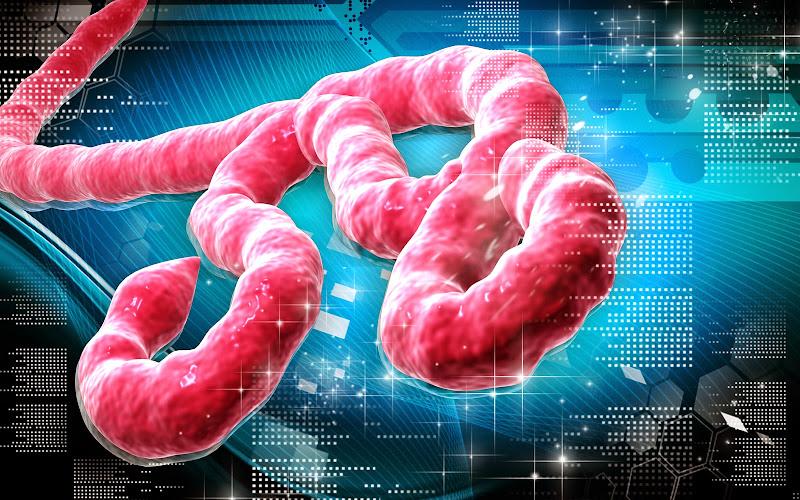 Diagnosticat cu ebola #1