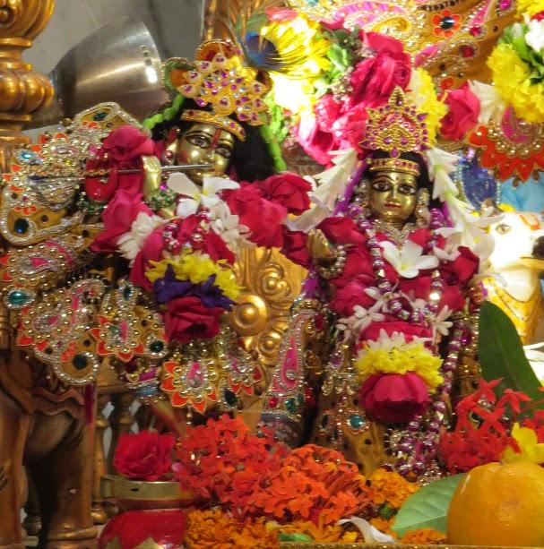 ISKCON Vallabh vidhyanagar Deity Darshan 04 jan 2017 (5)