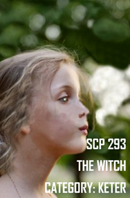 SCP 293