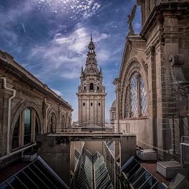 Museu Nacional d'Art de Catalunya by Ole Steffensen - Buildings & Architecture Public & Historical ( roof, museu nacional d'art de catalunya, tower, barcelona, spain, national art museum of catalonia )