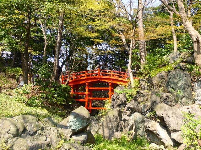 Cath hk jardin de koishikawa korakuen tokyo japon for Jardin korakuen
