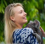 Maria Sharapova - Brisbane Tennis International 2015 -DSC_5951.jpg