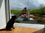 Blick aus dem Wohnzimmer (mit Hund)