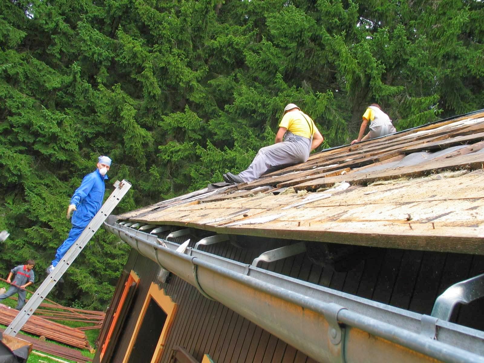 Delovna akcija - Streha, Črni dol 2006 - streha%2B074.jpg