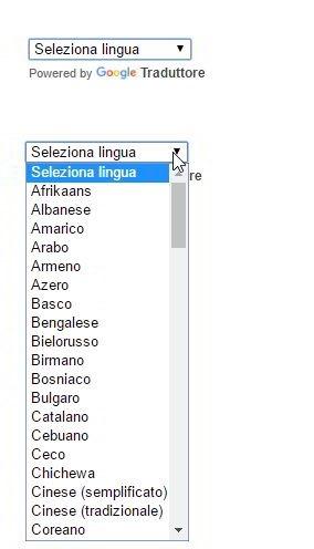 widget-traduttore
