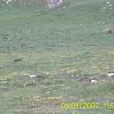 Taga 2007 - PIC_0116.JPG