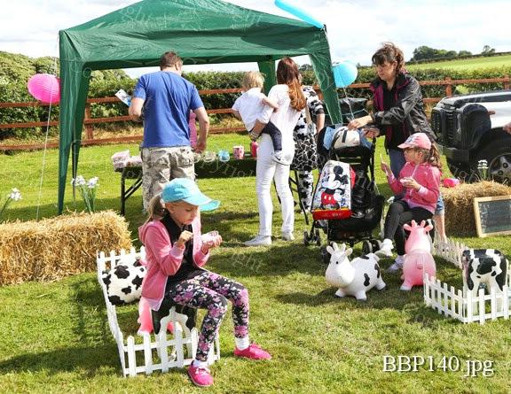 THE CHILDRENS ADVENTURE FARM TRUST - BBP140.jpg