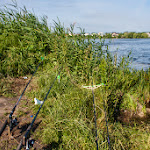 20140624_Fishing_BasivKut_027.jpg