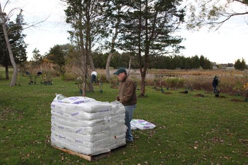 Hammo Fall Planting - Jim Murtagh - BC3G2546.jpg