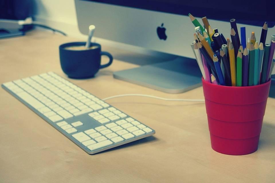 6 Hal Persiapan Jika Ingin Bekerja di Perkantoran Perusahaan Perkebunan Kelapa Sawit