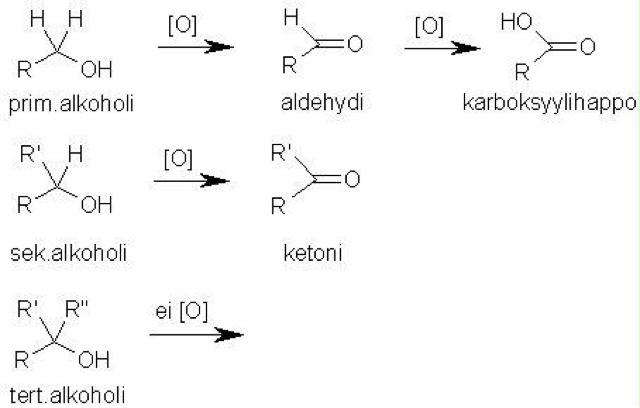 Protolyytti