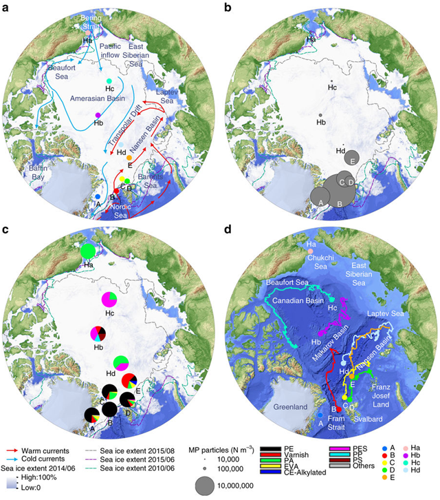Pathway and microplastic content of sea ice cores in the Central Arctic. a Sampling position of sea ice cores (A–E) obtained during three Polarstern expeditions overlaid with the sea ice concentration (June 2014) and a schematic view of the major cold and warm water currents. Blue arrows indicate the inflow of Pacific water. For comparison, previously sampled sea ice cores2 are included (Ha–Hd); b Total microplastic (MP) particle load m−3 of the various sea ice cores (this study) and data reproduced from Fig. 2 of Obbard et al.2*; c Average % composition of polymers (polyethylene (PE), varnish (including polyurethanes and polyacrylates), polyamide (PA), ethylene vinyl acetate (EVA), cellulose acetate (CE-Alkylated), polyester (PES) and polypropylene (PP) and others) from the entire core (this study) and digitized data of figure two from Obbard et al.2*, acrylic equals varnish (others include acrylonitrile butadiene, chlorinated polyethylene, nitrile rubber, polycaprolactone, polycarbonate, polylactic acid, polyimide, polystyrene, polyvinyl chloride, rubber); d Drift trajectories of sea ice cores, except for land-fast ice station of Greenland (A) and the sample originating from the Chukchi Shelf Ha. Graphic: Peeken, et al., 2018 / Nature Communications