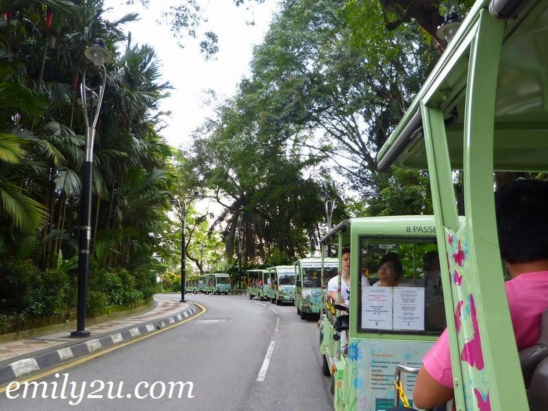 Kuala Lumpur trams