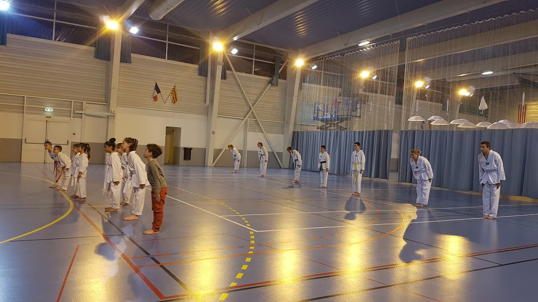 taekwondo kang claira ecole d arts
