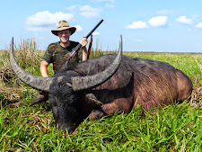 Tom Bauer from Germany took this big buffalo cleanly with a Merkel 470 NE. Bull scores over 100 SCI points.