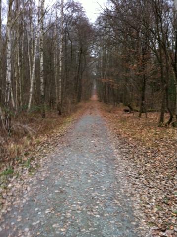 Nachmittags Lauf