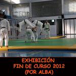 EXHIBICIÓN FIN DE CURSO 2012 (ALBA)