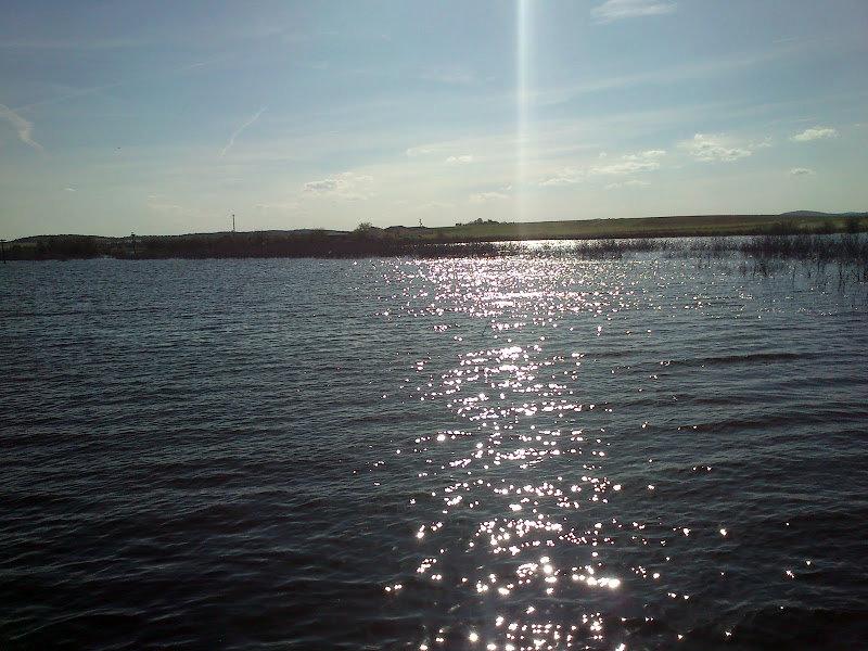 Lugar idóneo para pescar