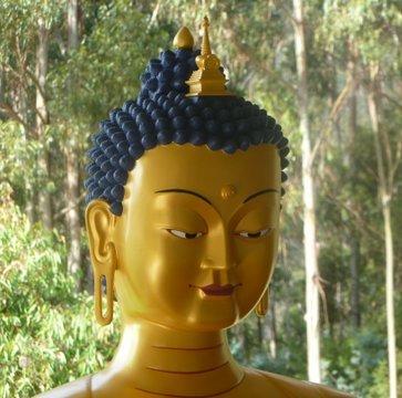 Portrait of new Maitreya statue, Chag-tong Chen-tong Centre, Snug, Tasmania, Australia