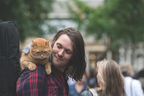 um-gato-de-rua-chamado-bob-1