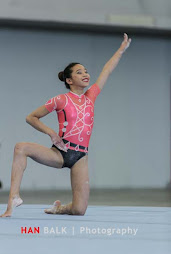 Han Balk Fantastic Gymnastics 2015-2667.jpg