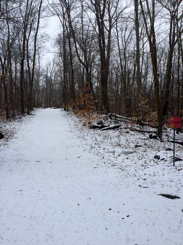 Skaters Waltz ski trail covered with dusting of snow.