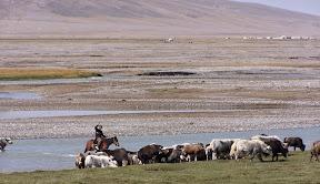 Traversée de rivière au Kirghizistan, au pied du Mustha Ata