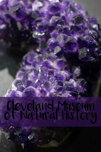 Cleveland–Museum of Natural History
