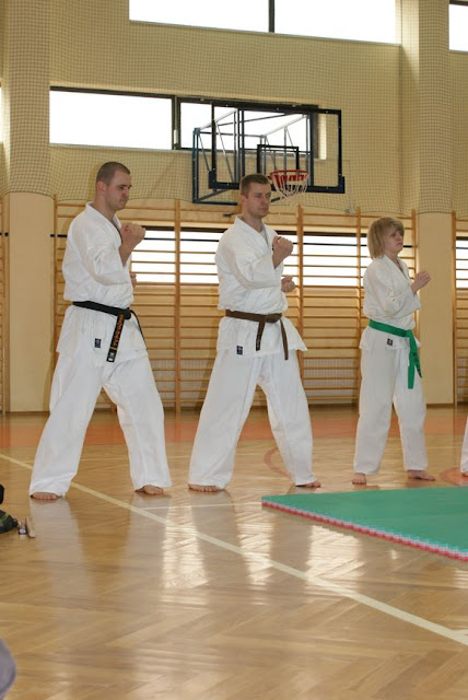 DO 2011 Pokaz karate - DSC00080_1.JPG
