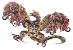 Shells Dragon