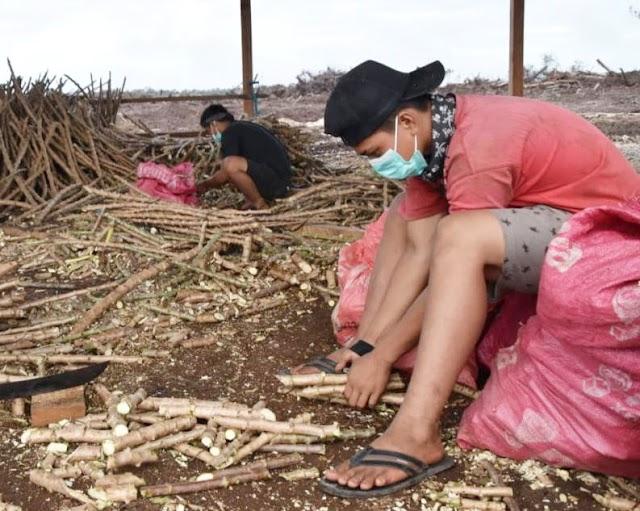 Gubernur Sugianto: Petani Itu Pekerjaan yang Mulia