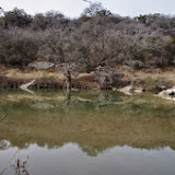 01-25-14 Texas Hill Country after an Ice Storm - IMGP1187.JPG