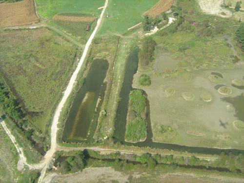 Aerial Shots Of Anderson Creek Hunting Preserve - tnIMG_0382.jpg