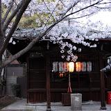 2014 Japan - Dag 8 - marjolein-IMG_1233-0091.JPG