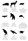 Animales de Patrulla II